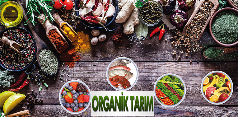 banner organik tarım 4